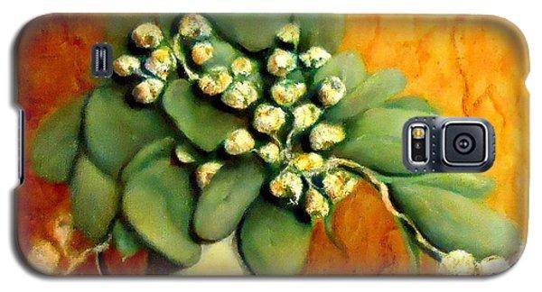 Gumnuts Still Life Galaxy S5 Case
