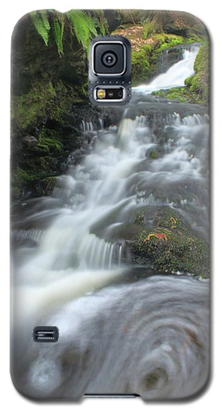 Gunn Brook Vortex Mount Toby Galaxy S5 Case by John Burk