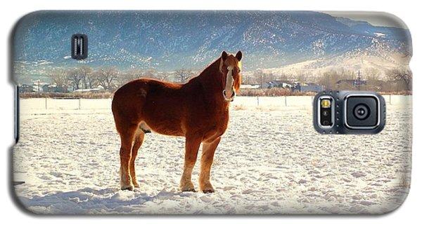 Gus Galaxy S5 Case