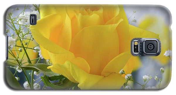 Galaxy S5 Case featuring the photograph Gypsophila And The Rose. by Terence Davis