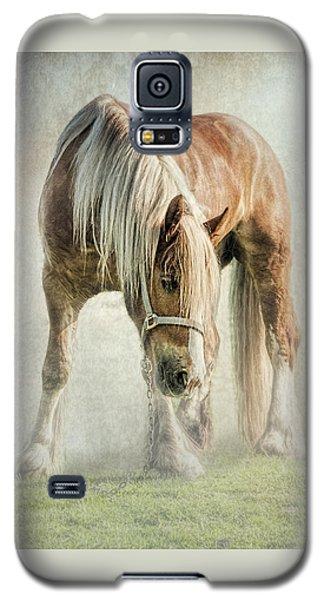 Gypsy In Morning Mist. Galaxy S5 Case by Brian Tarr