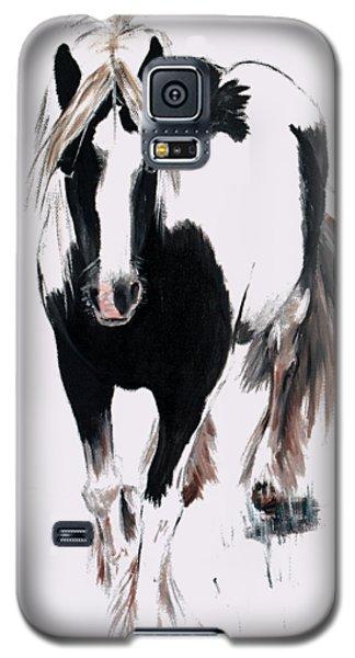 Gypsy Vanner Galaxy S5 Case