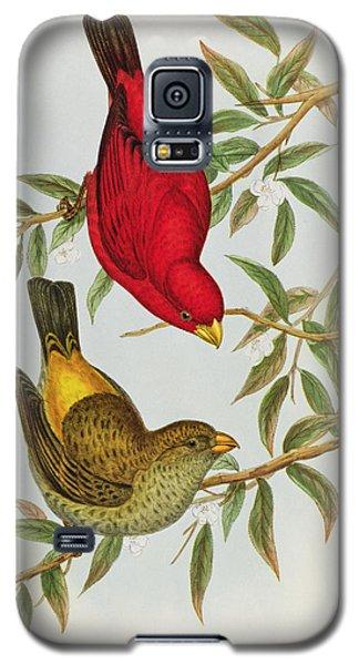 Haematospiza Sipahi Galaxy S5 Case by John Gould