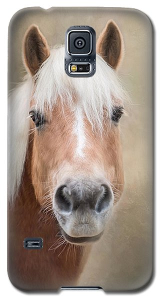 Galaxy S5 Case featuring the photograph Haflinger by Robin-Lee Vieira