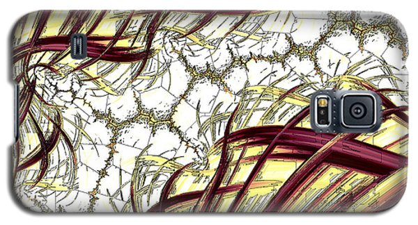 Hairline Fracture Galaxy S5 Case