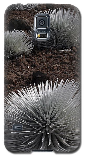 Haleakala Silverswords Galaxy S5 Case