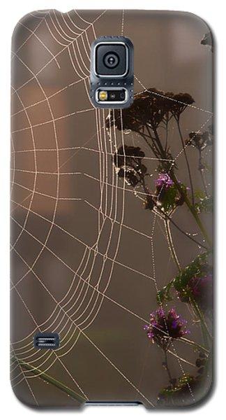Half A Web Galaxy S5 Case