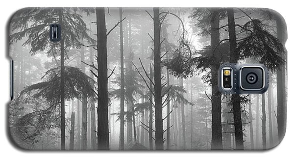 Galaxy S5 Case featuring the photograph Half Century by Mary Amerman