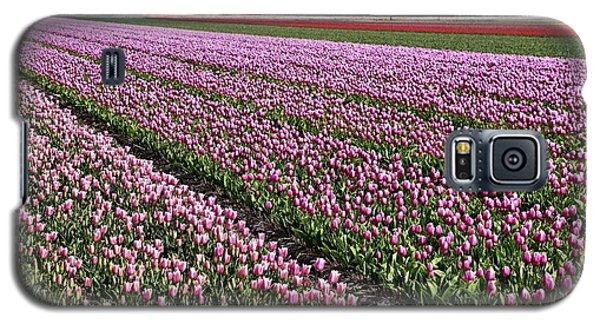 Half Side Purple Tulip Field Galaxy S5 Case by Mihaela Pater