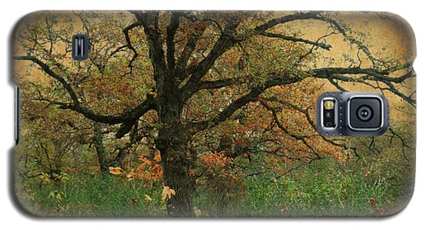 Galaxy S5 Case featuring the photograph Halloween Tree 2 by Scott Kingery