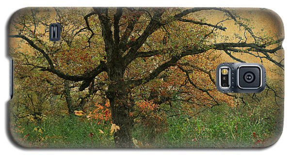 Halloween Tree 2 Galaxy S5 Case by Scott Kingery
