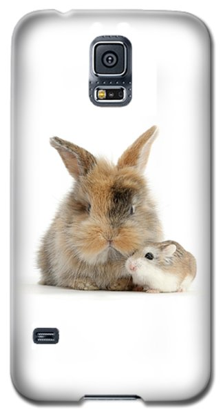 Ham And Bun Galaxy S5 Case