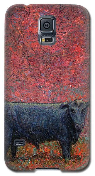 Bull Galaxy S5 Case - Hamburger Sky by James W Johnson