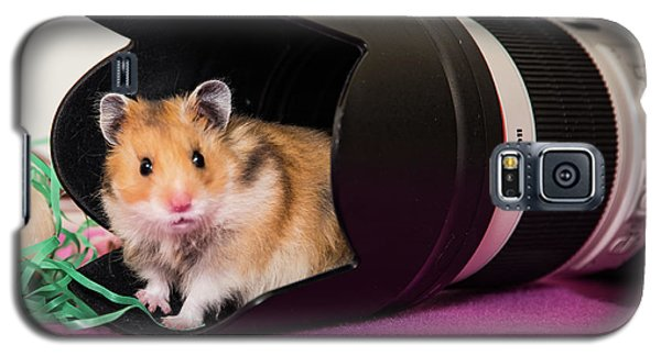 Hamster In The Hood Galaxy S5 Case