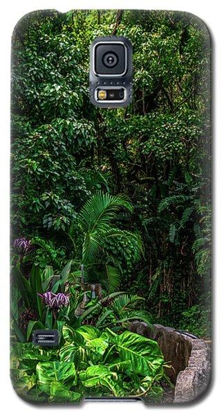 Hana Highway Maui Hawaii Galaxy S5 Case