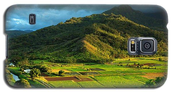Hanalei Valley Taro Fields Galaxy S5 Case