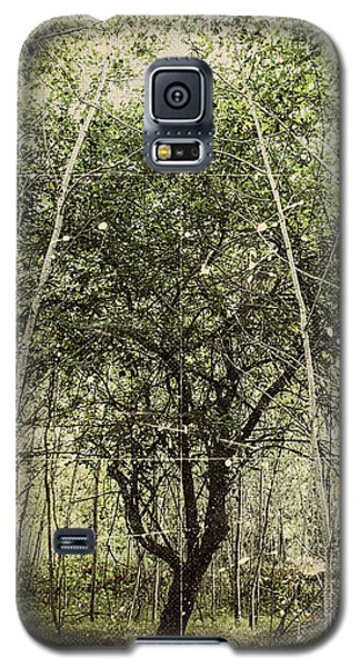 Hand Of God Apple Tree Poster Galaxy S5 Case
