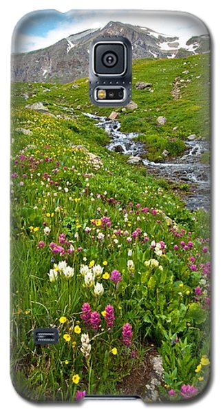 Handie's Peak And Alpine Meadow Galaxy S5 Case