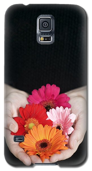 Hands Holding Colorful Gerbera Daisies  Galaxy S5 Case
