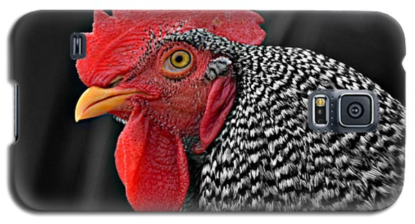 Handsome Plymouth Rock Rooster Galaxy S5 Case
