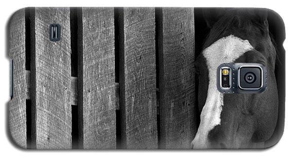 Handsome T Galaxy S5 Case