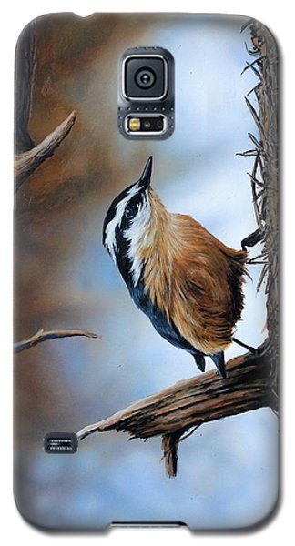 Hangin Out - Nuthatch Galaxy S5 Case