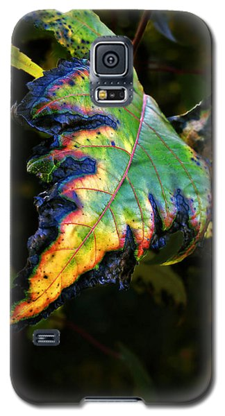 Galaxy S5 Case featuring the photograph Hanging Out by Joan  Minchak