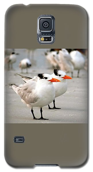 Hanging Out On The Beach Galaxy S5 Case
