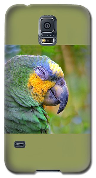 Galaxy S5 Case featuring the photograph Happy 2 by Wendy McKennon