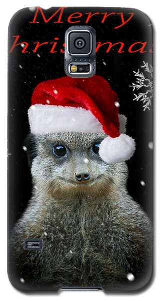Meerkat Galaxy S5 Case - Happy Christmas by Paul Neville