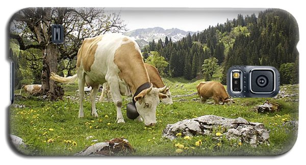 Happy Cows In High Pastures Galaxy S5 Case by Colleen Williams