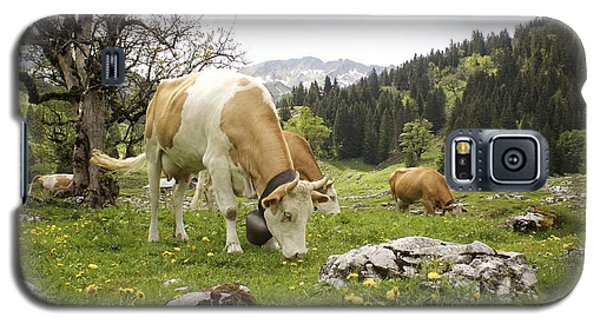 Galaxy S5 Case featuring the photograph Happy Cows In High Pastures by Colleen Williams