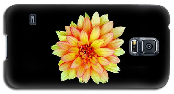 Happy Dahlia Galaxy S5 Case