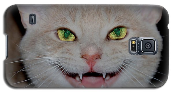 Happy For Spring Cat Galaxy S5 Case