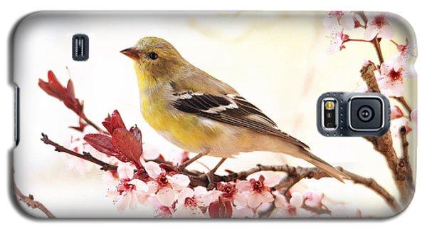 Happy Goldfinch Galaxy S5 Case