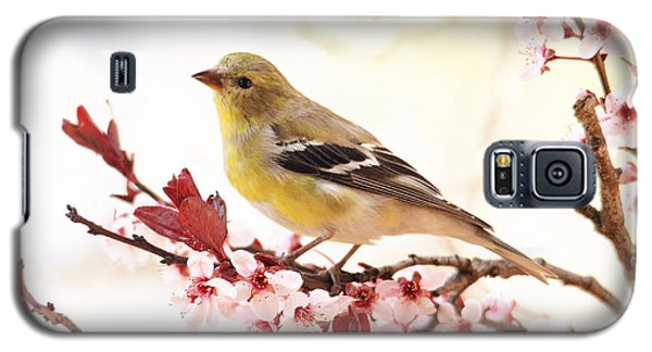 Happy Goldfinch Galaxy S5 Case
