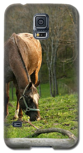 Galaxy S5 Case featuring the photograph Happy Grazing by Angela Rath