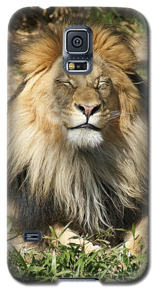 Galaxy S5 Case featuring the photograph Happy by Heidi Poulin