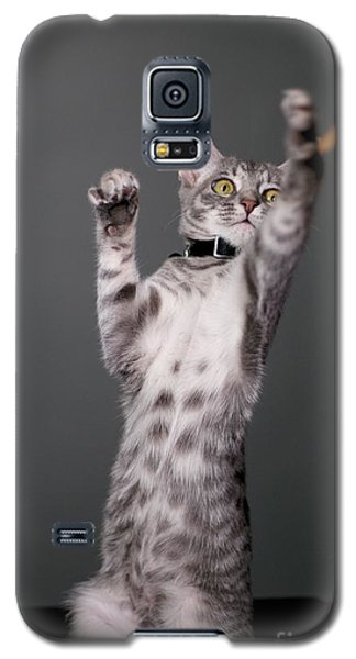 Happy Kitty Galaxy S5 Case