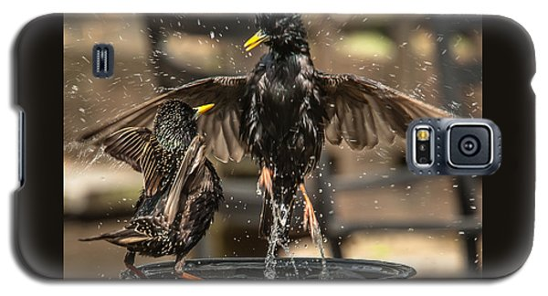 Galaxy S5 Case featuring the photograph Happy Starlings by Jim Moore
