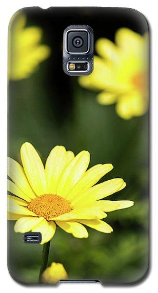 Happy Summer Flowers Galaxy S5 Case