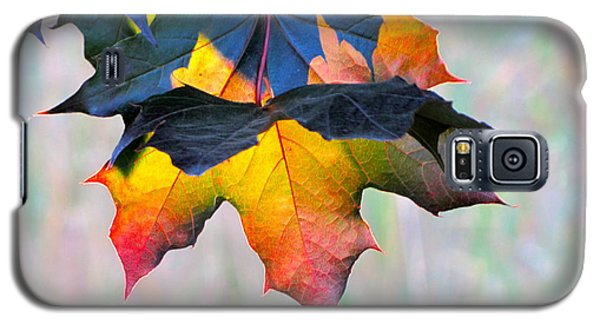 Harbinger Of Autumn Galaxy S5 Case by Sean Griffin