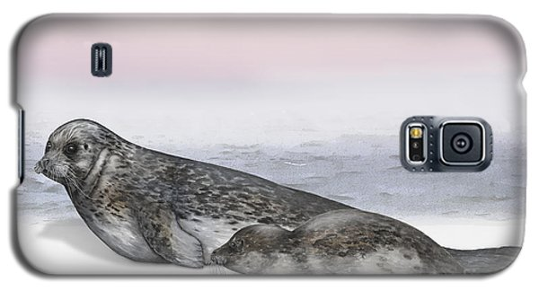 Harbour Seal Common Seal Phoca Vitulina - Marine Mammals - Seehund Galaxy S5 Case