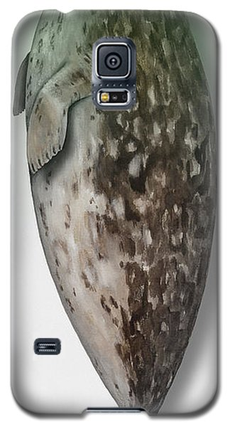 Galaxy S5 Case featuring the painting Harbour Seal - Harbor Seal - Phoca Vitulina - Phoque Commun - Foca Comune - Pinniped - Sleeping  by Urft Valley Art