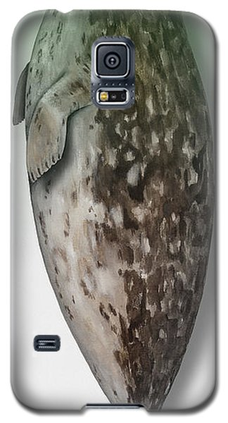 Harbour Seal - Harbor Seal - Phoca Vitulina - Phoque Commun - Foca Comune - Pinniped - Sleeping  Galaxy S5 Case