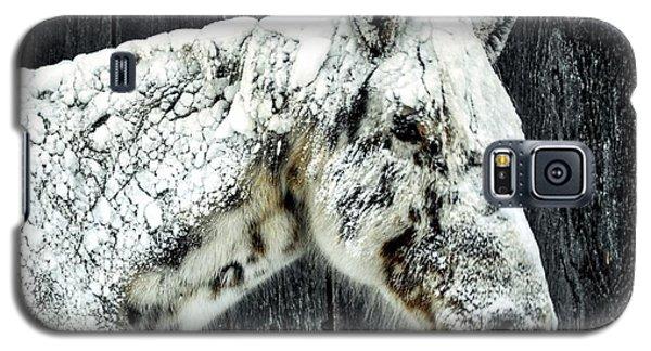 Hard Winter Galaxy S5 Case