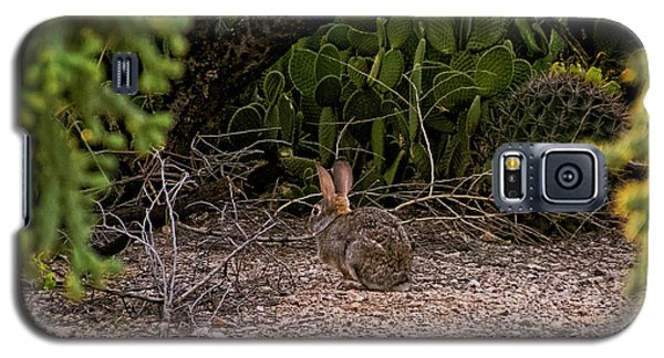 Galaxy S5 Case featuring the photograph Hare Habitat H22 by Mark Myhaver