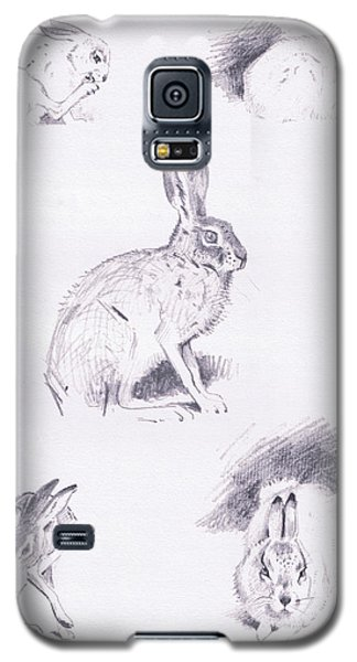 Hare Studies Galaxy S5 Case by Archibald Thorburn