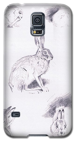 Hare Studies Galaxy S5 Case