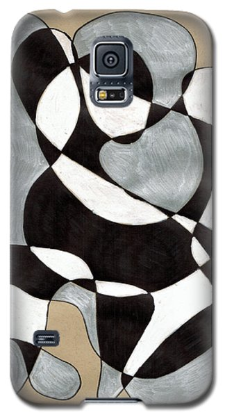 Harlequin Abtracted Galaxy S5 Case